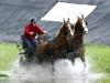 dag-van-aangespannen-paard-twee-span-waterbak-2011